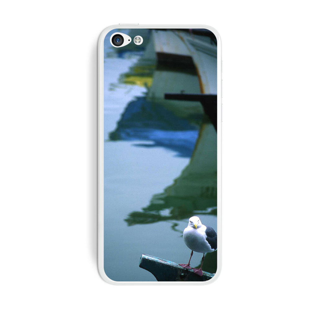 Boats and Seagull iPhone 5C Skin