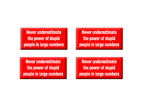 Never Underestimate The Power Of Stupid People - Set of 3D Stickers